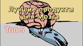 Топ 5 Лучших Продуктов для Мозга